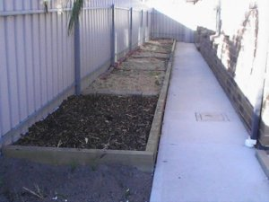 The first veggie patch along the side of the house.
