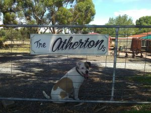 Bruce. Apparently his last name is Atherton.