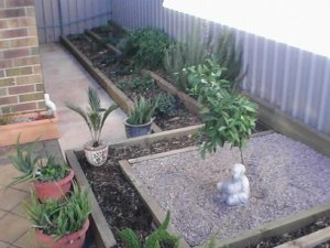 Ornamental area with reclaimed herb garden in the background.