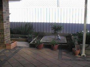 Ornamental garden with mandarin centre piece.
