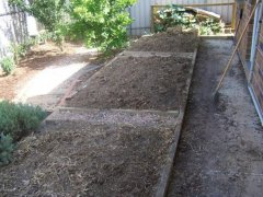 Reclaiming a paved area as veggie patch - preparing the soil.