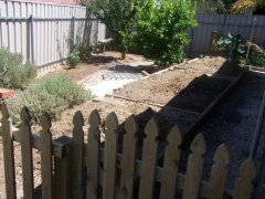Reclaiming a paved area as veggie patch - etching out the raised beds.
