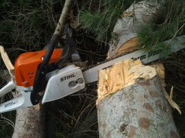 Some handy axe work was required.