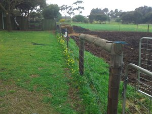 This old farm fence had to go.