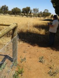 Setting up the stand-off fence.