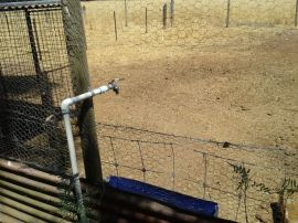 This is the hole we cut into the chook yard so Linhda can feed the babies without getting in with them.