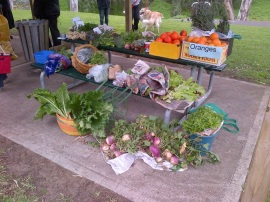 The Gawler Produce Swap. It went well.