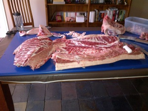 This is half of Prosciutto boned out and ready to be made into bacon and sausages.