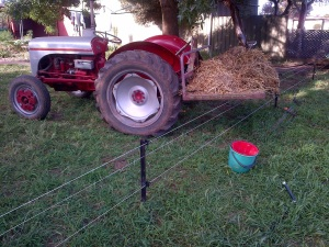 Real farmers don't need no stinking wheelbarrows!