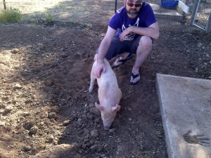 Pete meeting Gianna, his piglet.