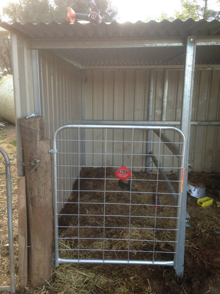 The new milking stall. It even works!