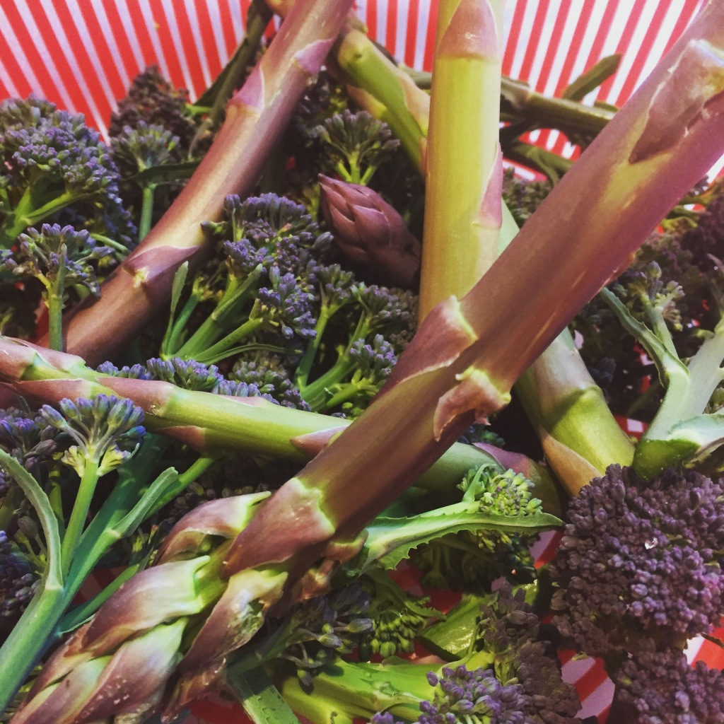 A garden harvest of purple sprouting broccoli and the first of our asparagus.