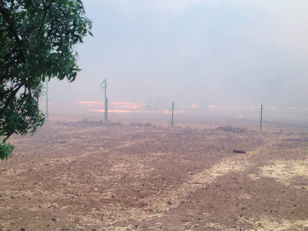 The back paddock burning.
