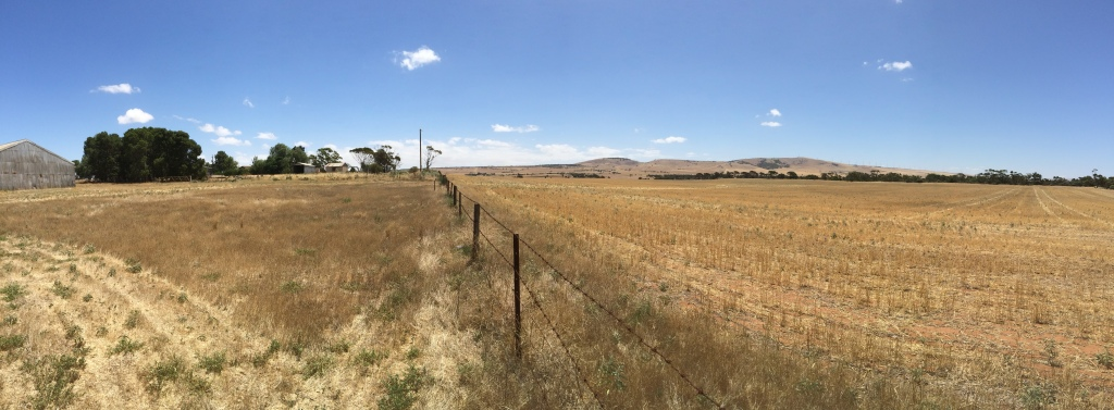 A bit of a panoramic shot facing west from down near the loading yards.